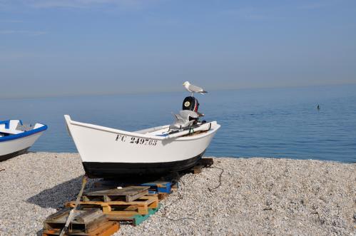 Marie-José Billard : La barque