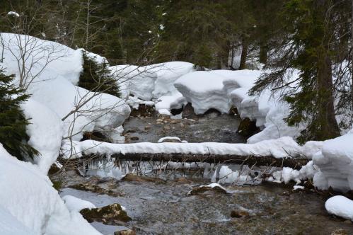 Alain Burde : Torrent en hiver La Leze Suisse