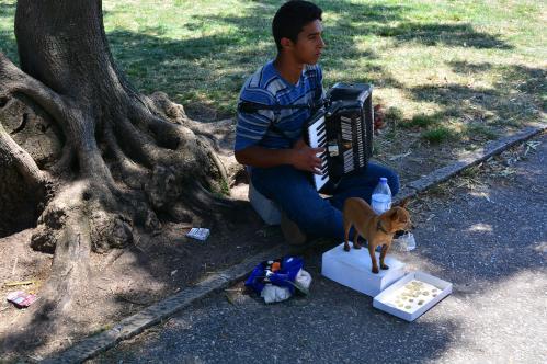 Alain Burde : Joueur avec son chien