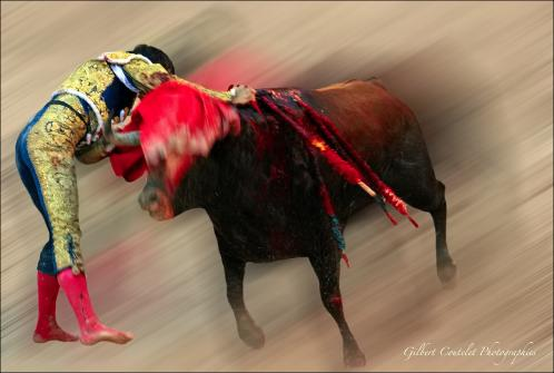 Gilbert Coutelet : Corrida